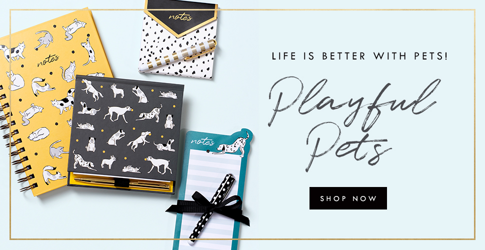 collection playful pets